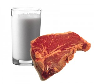 Milk and Meat of the Word